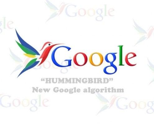 Google hummingbird algo