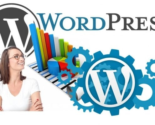 13-astonishing-wordpress-statistics
