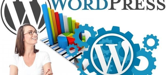 13-astonishing-wordpress-statistics